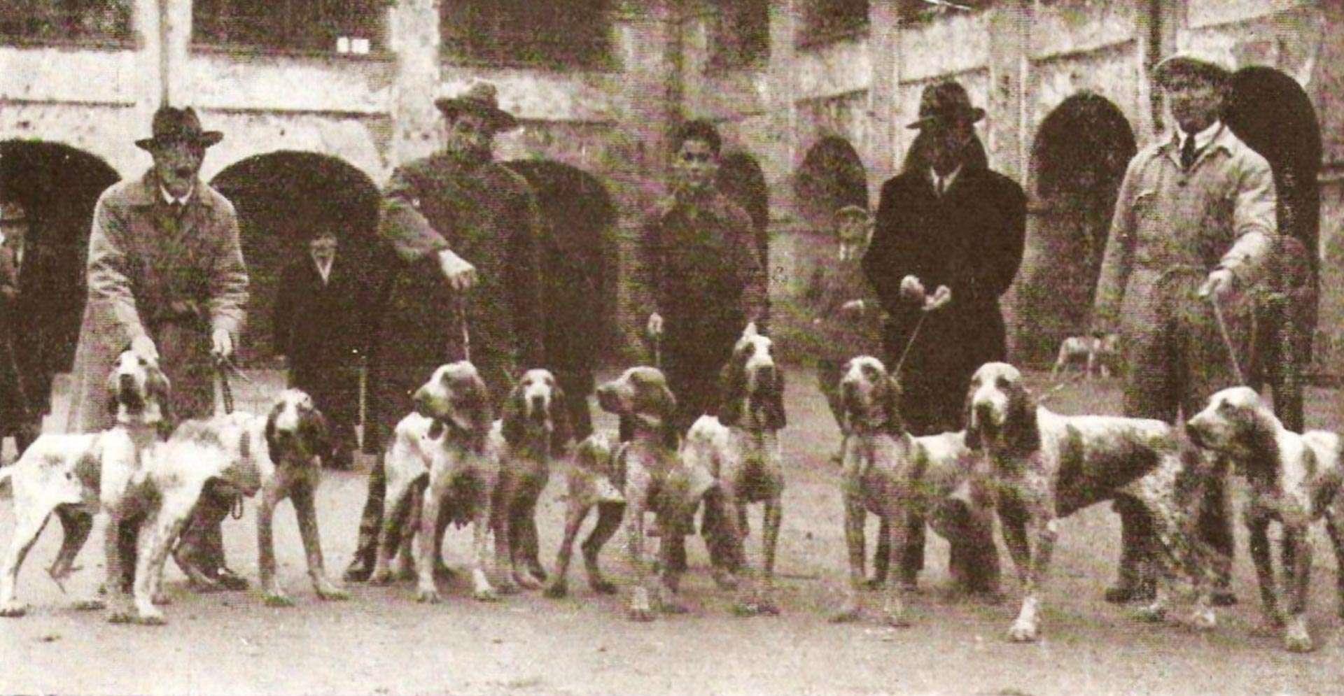 La nascita della SABI - Società Amatori Bracco Italiano