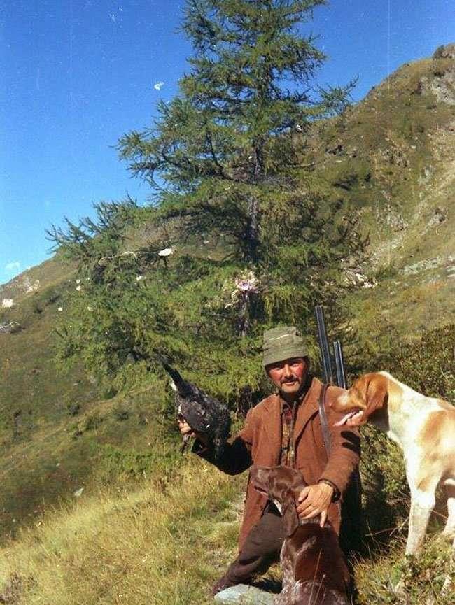 caccia di montagna con il bracco italiano